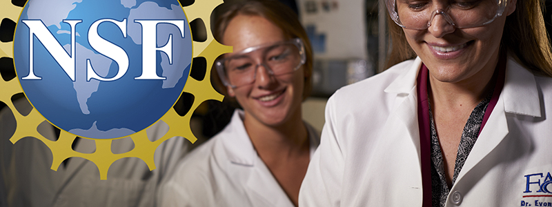 NSF Awards $249,000 to Advance STEM Diversity